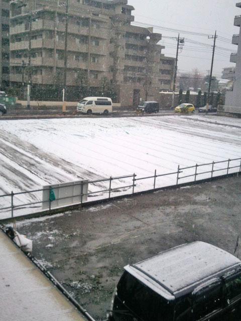 20120120yuki.jpg