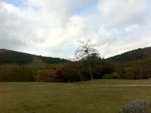 峰山高原ホテル