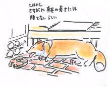 $あしあと工房 in 神戸波止場町TEN×TEN-伸びるか