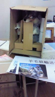 $あしあと工房 in 神戸波止場町TEN×TEN-羊毛オオカミ輸送中