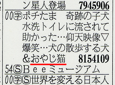 産経テレビ欄