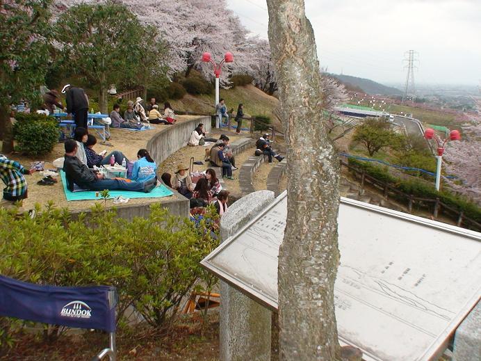 福島県南相馬市から避難して来た被災者と一緒にお花見♪