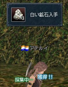 20111102_2.jpg
