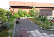 区役所屋上庭園1