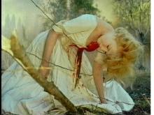 血とバラ3