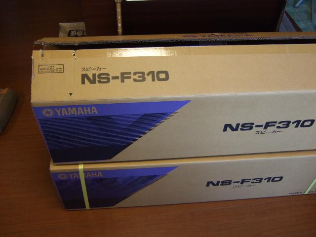NS-F310