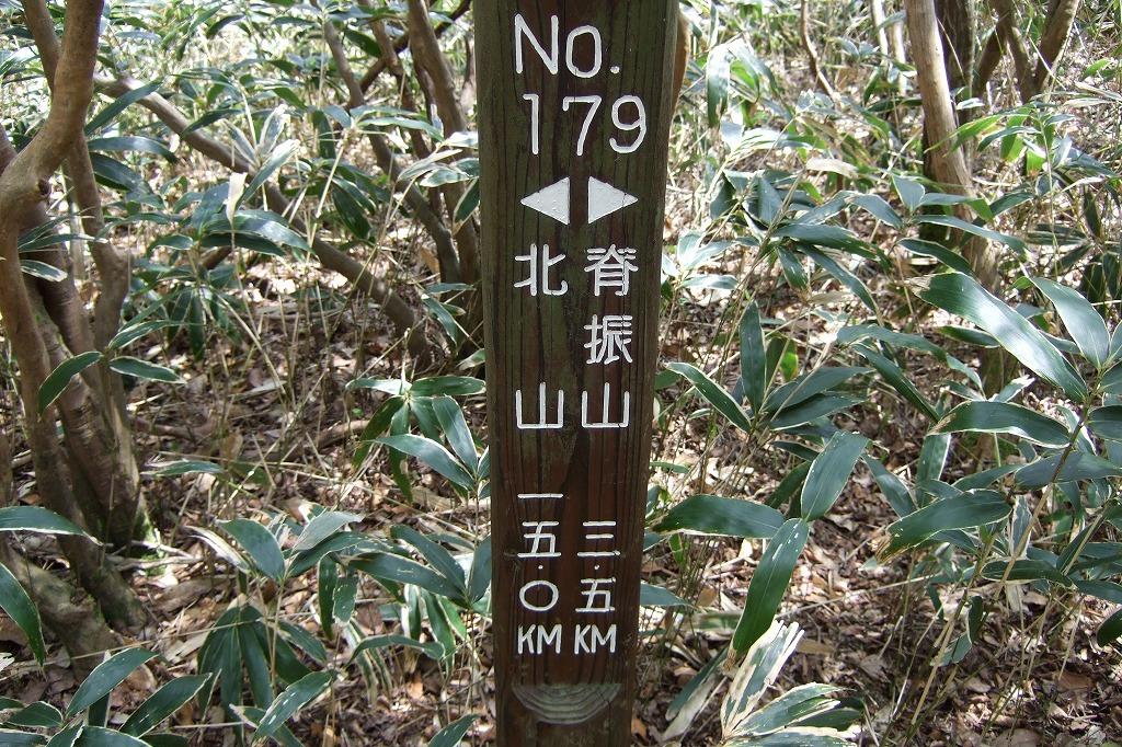 s-DSCF1237.jpg