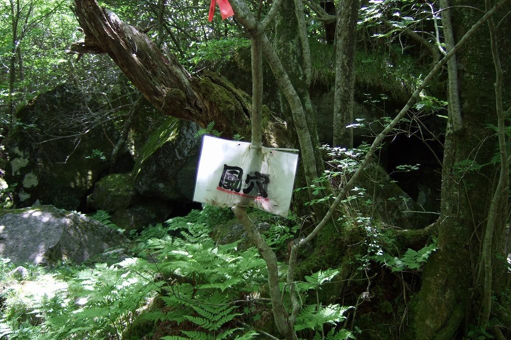 s-DSCF1545.jpg
