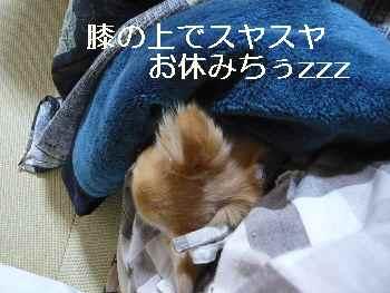 blog2013012302.jpg