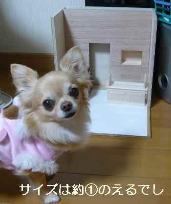 blog2013012407.jpg