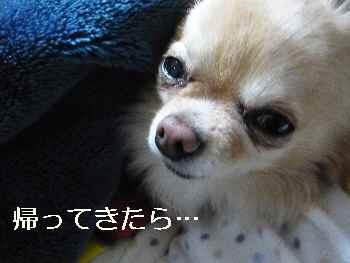 blog2013012701.jpg