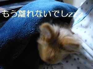 blog2013012702.jpg