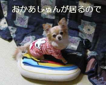 blog2013020101.jpg