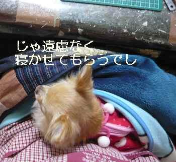 blog2013021903.jpg