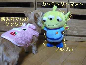 blog2013022502.jpg