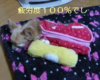 blog2013030404.jpg