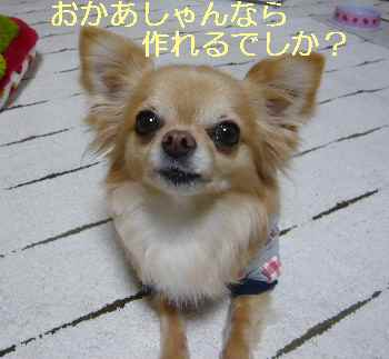 blog2013030606.jpg