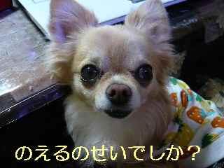 blog2013030703.jpg