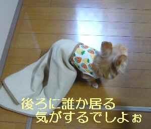 blog2013030901.jpg