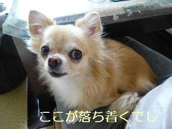 blog2013093003.jpg