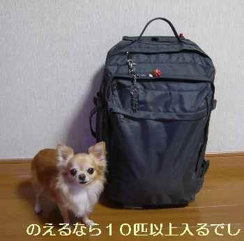 blog2013100202.jpg