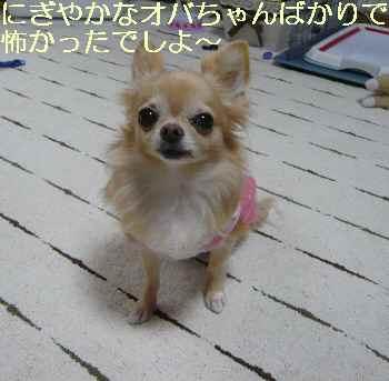 blog2013100408.jpg