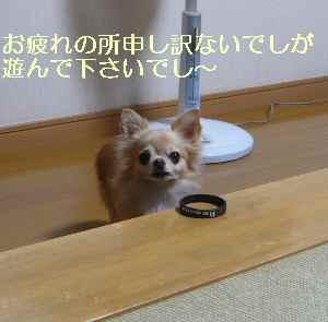 blog2013100701.jpg