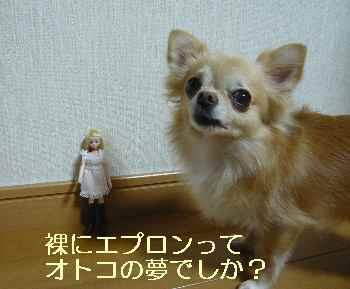 blog2013100801.jpg