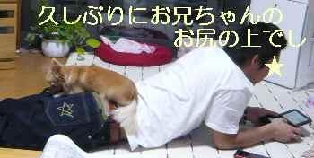 blog2013101205.jpg