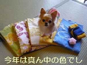 blog2013102702.jpg