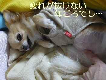 blog2013102904.jpg