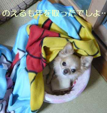 blog2013103003.jpg