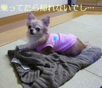 blog2013110601.jpg