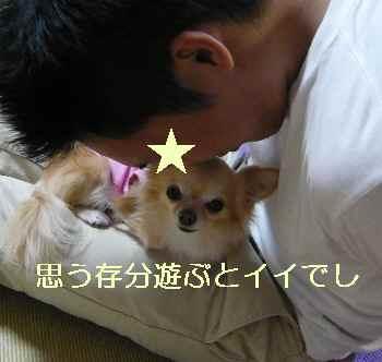 blog2013110806.jpg