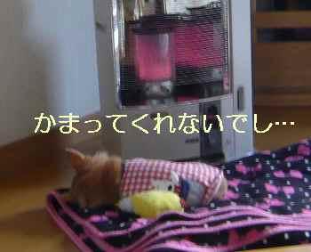 blog2013112201.jpg