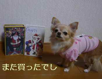 blog2013112307.jpg