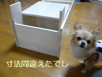 blog2013112602.jpg