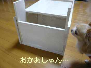 blog2013112603.jpg