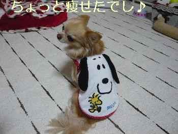 blog2013112605.jpg