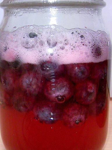 0815ブルベリー酵母