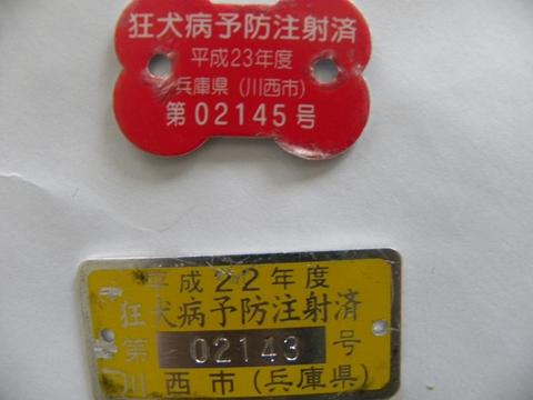 DSCN2913.jpg