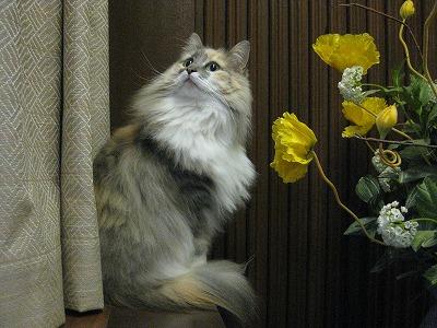 2-み1003ぶ6678