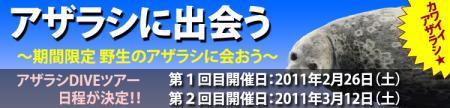 azarashi_09.jpg