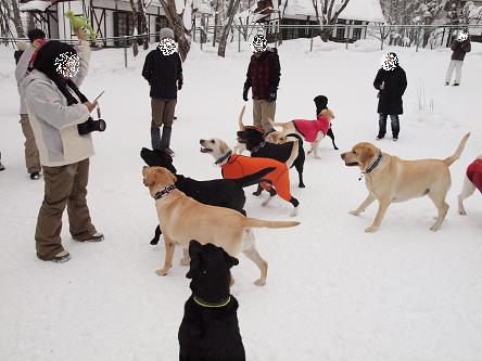 雪遊び②-3