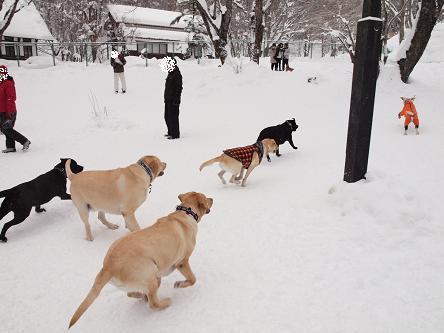 雪遊び②-4