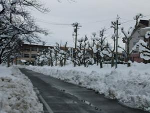 五泉高校へ続く道