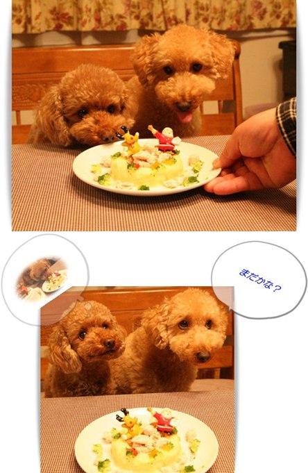 ケーキ大好き~☆