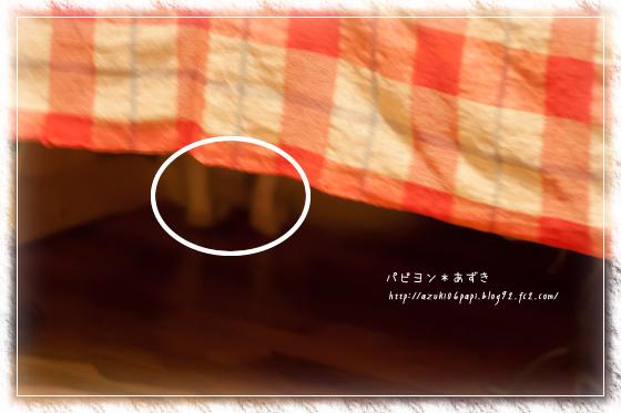 20131012_IMG_23.jpg