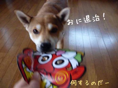 P1330797-AZUKI.jpg