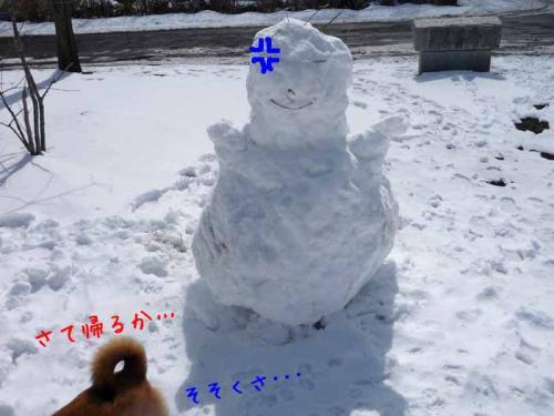P1350771-AZUKI.jpg